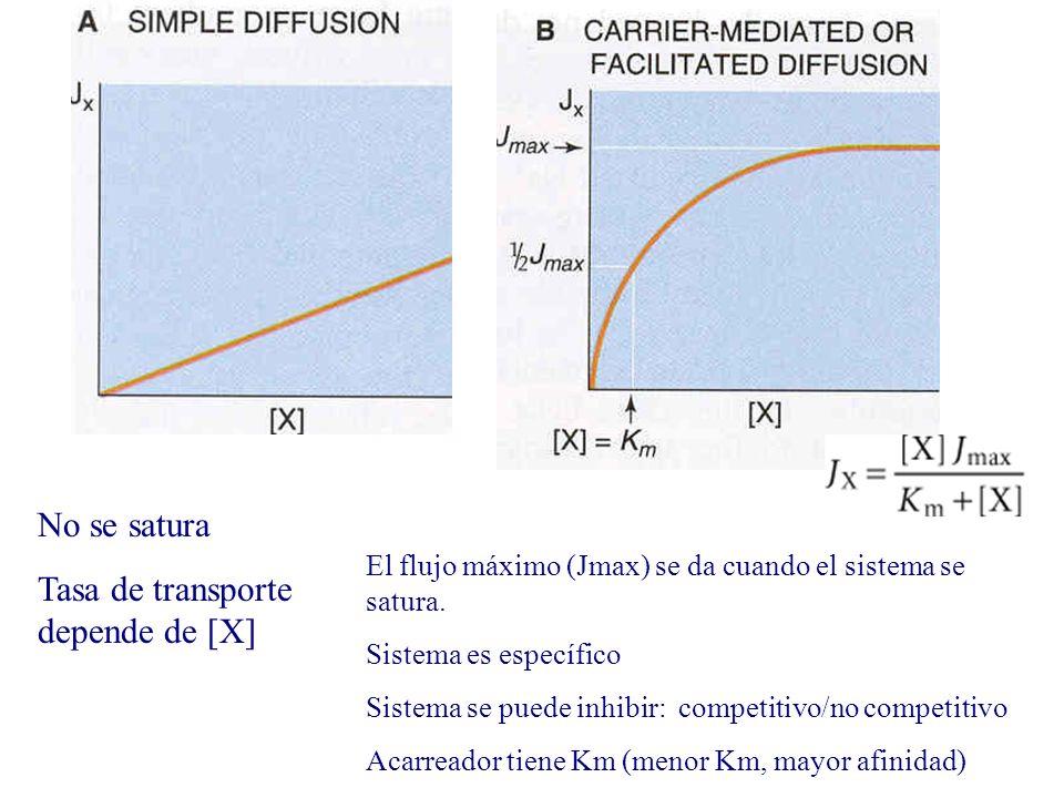 Tasa de transporte depende de [X]